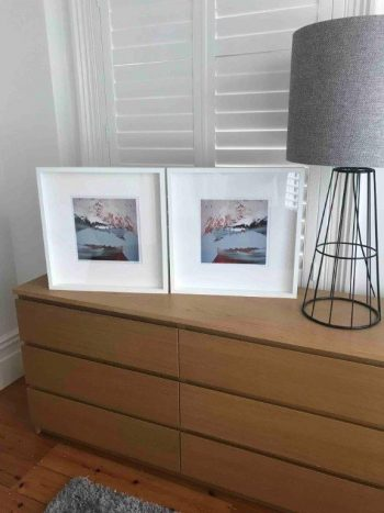 Pair of display prints - freedom iiia by Sarah Jane Artist