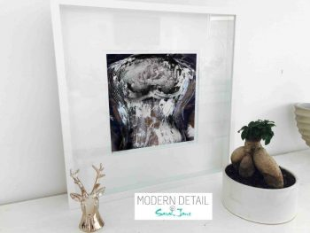 Sarah Jane Modern Art Print called Anonymous IIa in a small white shadowbox frame - Modern Detail By Sarah Jane